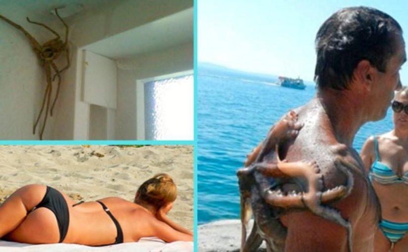 20 фотографий, доказывающих, что лучше не отправляться на отпуск в слишком экзотические страны
